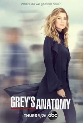 Greys Anatomy - 16ª Temporada Séries Torrent Download onde eu baixo